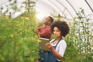 AGCO Africa presents Africa Agribusiness Qualification to tackle youth unemployment